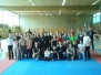 Savate Assaut DM 2013