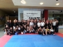 Savate Assaut DM 2014